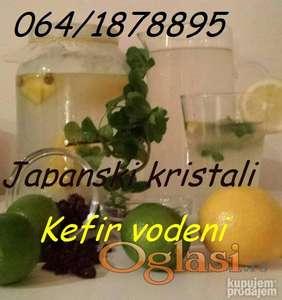 Kefir vodeni - Japanski kristali