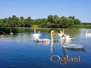 Vikendica prvi red od Dunava, Banoštor ID#1106