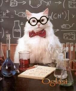 Časovi matematike, fizike i hemije, i engleskog