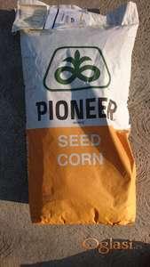Pioneer P0216