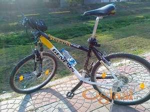 Genesis 2010 MTB
