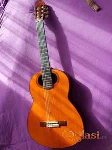 Časovi klasične gitare osnovcima, Novi Sad