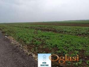 Ledine, poljoprivredno zemljište, 40ari,ceo plac ili deo placa,dogovor ID#29444