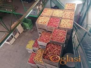 Kvalitetna jabuka za pečenje rakije
