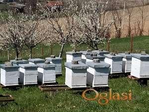 Pčelinja društva u LR košnicama prodajem