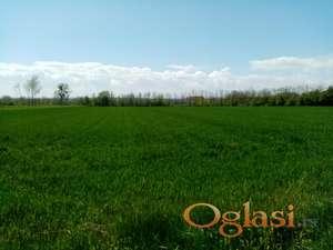 Poljoprivredna parcela 1,4 ha