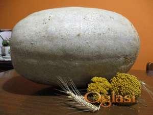 Bela bundeva seme - 20 semenki
