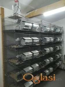 Polovni KAVEZI činčile 250e za 124 životinja