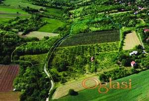 Organsko sertifikovano imanje od 4 ha, idealno za odmor i seoski turizam