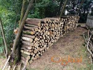Drvo za ogrev - bagrem