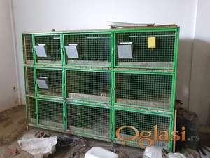 kavezi za zeceve i zivinu