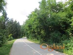 Veliko šumsko zemljište 85 ari,u vikend zoni ZA PČELARE, Čerević