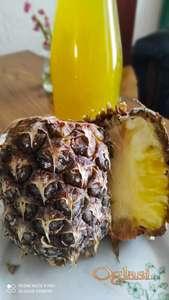 Sirce Ananas