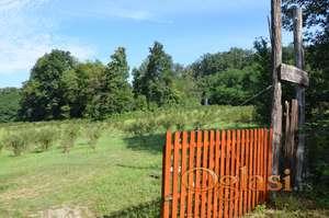 2,5 hektara zemlje pod organskom borovnicom sa brvnarom 40m2