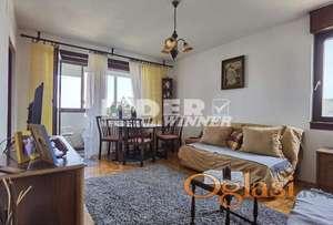 1.0 stan u Borči ID#101113