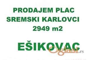 PLAC - SREMSKI KARLOVCI - EŠIKOVAC PUCAVAC -  2949  m2 - 60750 Evra ID#1227