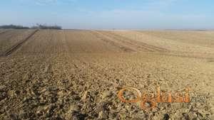 Poljoprivredno zemljiste