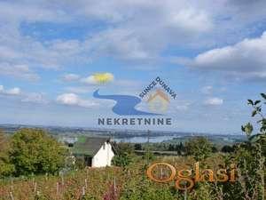 Vinarija na prodaju kapaciteta 50000 litara vina , Čerević ID#1032
