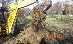 Vadjenje i uklanjanje panjeva, korena, žila, krčenje i rasčišćavanje, uredjenje placeva-terena-zemljišta bagerom i ručno