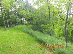 Soba za petoro,pogled na borove, vikendica okružena šumom a na parceli od 10 000m2,