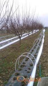 tunelski plastenici