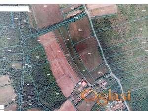 Plac 45.16ari Parcani-Sopot,uknjizen,vlasnik