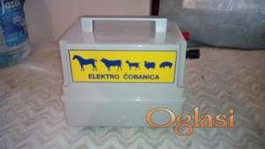 Elektricna cobanica (pastirica)