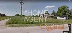 Lipovica - hit lokacija za biznis! ID#1140