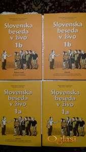 Individualni online kursevi slovenačkog jezika