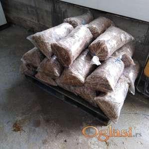 Bukovaca zasejani dzakovi semenom Bukovace