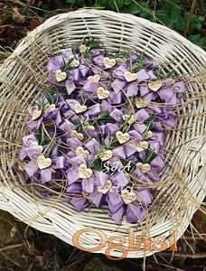 Cvetici za kicenje svatova