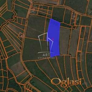 Avala - Trešnja - Veliko polje  1ha10ari ID#2907