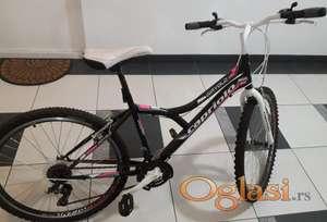 Bicikl Capriolo Diavolo 600