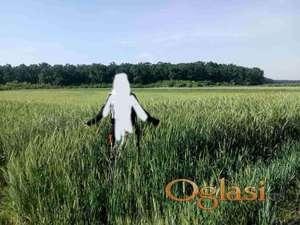 Obradivo poljoprivredno zemljište