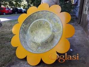 Zidni izlozi cvet Beograd