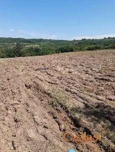 Poljoprivredno zemljiste-njiva 3,7ha