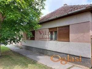 Turija, Kvalitetna kuća sa šestogodišnjim zasadom PAULOVNIJE - kineskim carskim drvetom- ekonomski isplativo