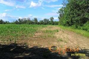 Prodajem zemljište u blizini Uba