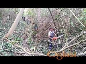 Krčenje korova, seca stabala obaranje