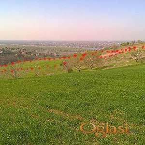 Novi Sad Fruška gora Ledinci, gradsko građevinsko zemljište 18 a VLASNIK