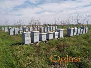 Pčelinja društva sa košnicama