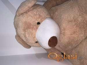 Meda Teddy 2m