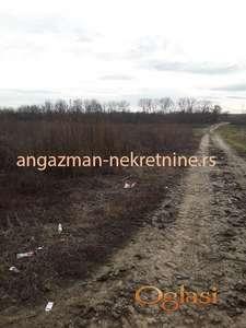 Kvantaš – 220ari ID#13896